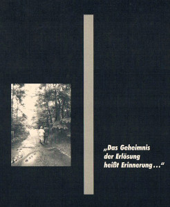 Die Broschüre enthält alle Fotos und Texte des Historischen Lehrpfades der KZ-Außenstelle Walldorf. (76 Seiten)