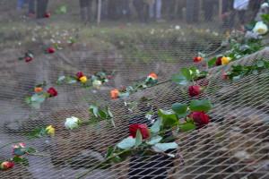 Ein Netz mit vielen Rosen lag zunächst über der Ausgrabungsstelle des Kellers der ehemaligen Küchenbaracke. In diesen räumen waren viele der 1.700 jungen ungarischen Jüdinnen 1944 grauenvoll geprügelt worden. SchülerInnen und StudentInnen haben diesen Keller im Laufe der letzten zehn Jahre nach und nach freigelegt.